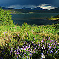 Storm In Dillon by Lynn Bauer