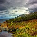 Stormy Coast by Matt  Trimble