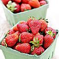 Strawberries by Elena Elisseeva