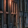 Street Light by Brenda Bryant