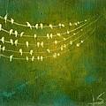Summer Song by Lisa Stevens