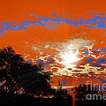 Sunburst by RJ Aguilar