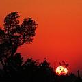 Sundown by Todd Sherlock