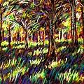 Sunlight Through The Trees by John  Nolan