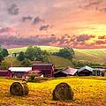 Sunrise Pastures by Debra and Dave Vanderlaan
