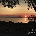 Sunset Cruise by Pamela Baker