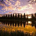 Sunset Reflection In A Park Pond by Craig Tuttle
