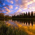 Sunset Reflection On A Pond, Portland by Craig Tuttle