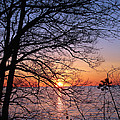 Sunset Silhouette 1 by Peter Chilelli