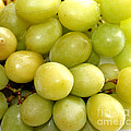 Sweet Green Grapes by Barbara Griffin