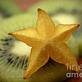 Sweet Pleasures by Inspired Nature Photography Fine Art Photography