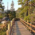 Tahoe Bridge by Silvie Kendall