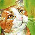 Tan and White Domestic Cat Print by Cherilynn Wood