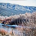 Taos Creek by Lisa  Spencer
