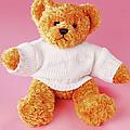 Teddy Bear by Terry Mccormick