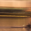 Tempe Town Lake Rowers Abstract by Dave Dilli