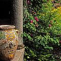 Temple And Garden Urn, The Wild Garden by The Irish Image Collection