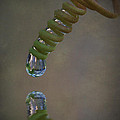 Tendril Droplet  by Kym Clarke