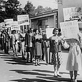 The Civil Rights Movement Began by Everett