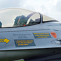The Cockpit Of An F-16 Fighting Falcon by Luc De Jaeger