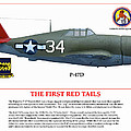 The First  Red Tails by Jerry Taliaferro