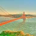 The Golden Gate Bridge  Fall Season Print by Alberta Brown Buller