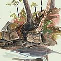 The Jessup Indian Lake Ny by Ethel Vrana