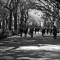 The Mall At Central Park by Rob Hans