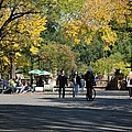 The Mall In Central Park by Rob Hans