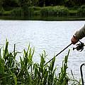 The Patient Fisherman