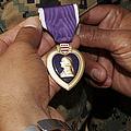 The Purple Heart Award by Stocktrek Images