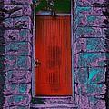 The Red Door by Tim Allen