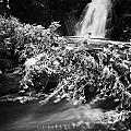 the river at the Gleno or Glenoe Waterfall beauty spot county antrim by Joe Fox