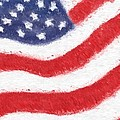 The United States Flag by Heidi Smith
