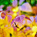 The Warmth Of Autumn Glow Abstract by Andee Design