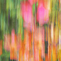 The Watercolor garden by Aimelle
