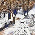 The Winter Park by Odon Czintos