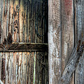 The Wood Shed by JC Findley