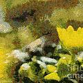 The Yellow Flower by Odon Czintos