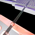 Thermoelectric Silicon Nanowire, Artwork by Peidong Yanguc Berkeley