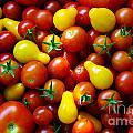 Tomatoes Background by Carlos Caetano