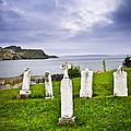 Tombstones near Atlantic coast in Newfoundland Print by Elena Elisseeva