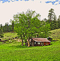 Tom's Old Cabin by James Steele