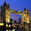 Tower Bridge In London At Night by Elena Elisseeva