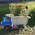 Toy Truck Planter by Gordon Wood