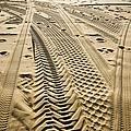 Tracks In . Sand by Sam Bloomberg-rissman