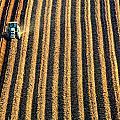 Tractor Plowing A Field by John Short