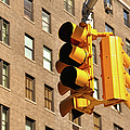 Traffic Signal by Keith McInnes Photography