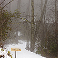 Trailhead Covered With Snow by Will and Deni McIntyre