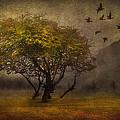 Tree And Birds by Svetlana Sewell